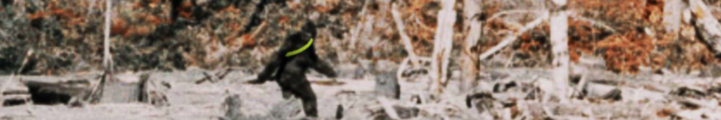 Moonsash-bigfoot